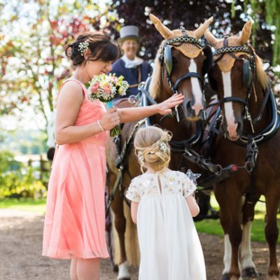 A flower girl meets the horses on arrival in the gardens.