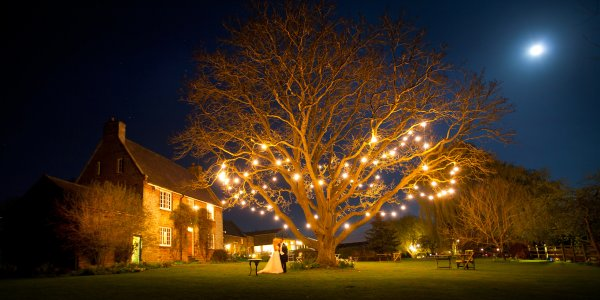 A bride and groom look picturesque under the walnut tree at night.