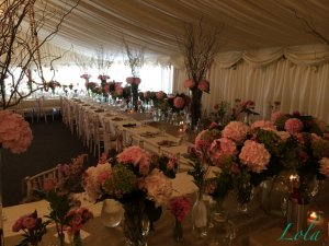 An unusual but sociable lay out with lots of preety peonies.