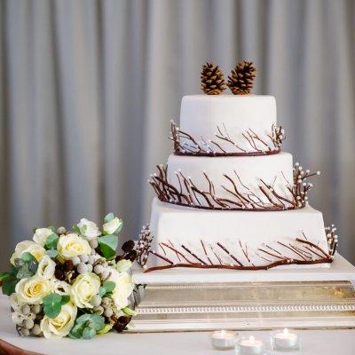 A wintery cake.