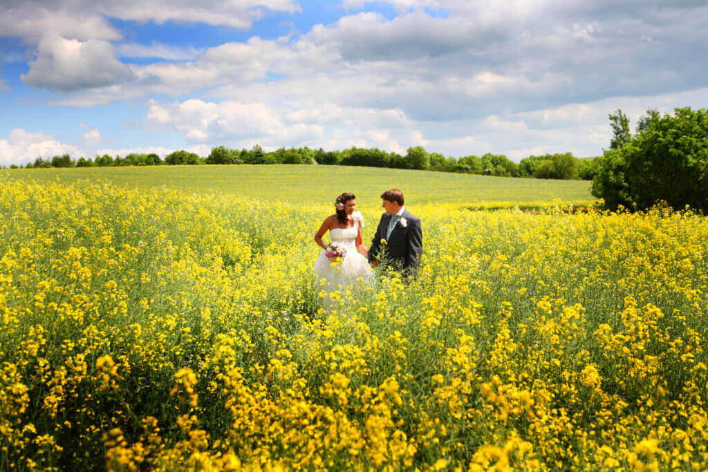 bride and groom in a yellow field having their wedding photos taken